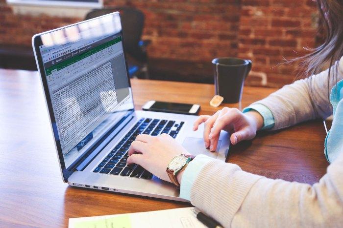 Компании и ИП начнут сдавать отчеты в Росстат только в электронном формате
