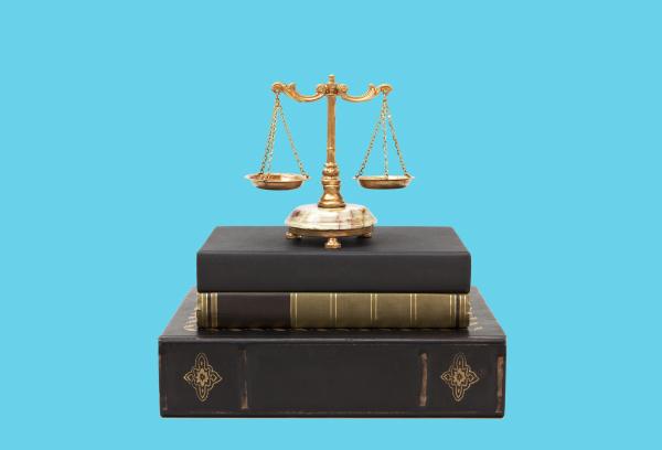 Законодательная база нейминга-1